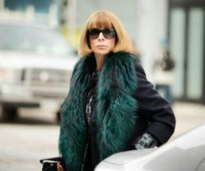 Правила выбора зимнего пальто